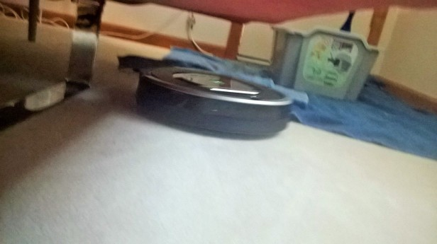 A UFO sighting on my floor...